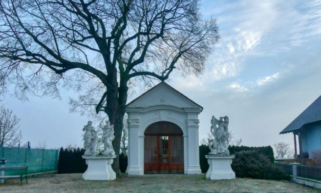 Droßer Wanderweg D5: Durch den Wald nach Lengenfeld – über Felder zurück