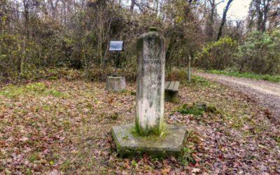 """""""tut gut"""" Wanderweg Grafenegg – Route 4: Zum fünfeckigen Stein"""