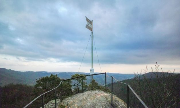 Kurze, aber anstrengende Wanderung zur Hiesbergwarte bei Senftenberg