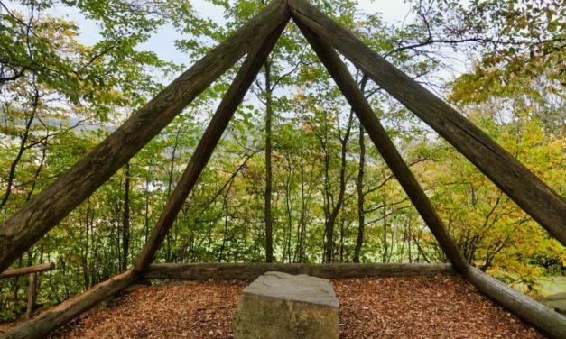 """Die Naturparke-Wanderung auf dem """"Kraftweg"""" in Maria Laach am Jauerling"""