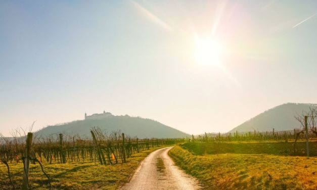 Weitwanderweg Kremstal-Donau 02: Mautern – Furth