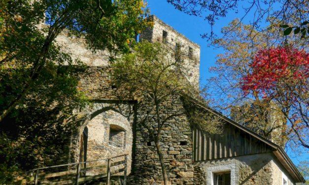 Kurze Wanderung zur Ruine Kronsegg