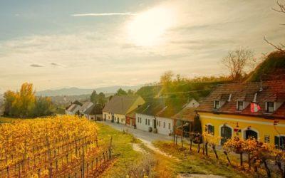 Über Österreichs längste Kellergasse zum Heinz-Conrads-Tor