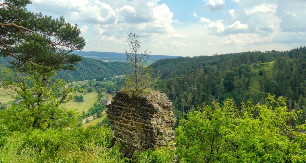 Wanderung zur Ruine Schimmelsprung bei Gars am Kamp