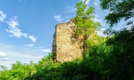 Kurze Wanderung zur Ruine Schonenburg bei Schönberg am Kamp
