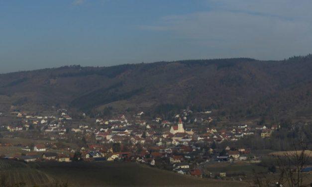 Der Weinentdeckungspfad im Naturpark Kamptal-Schönberg