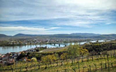 Kremser Rieden- und Wanderkarte – Wanderung 2: Rundwanderweg Steiner Hund