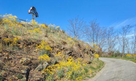 Kremser Rieden- und Wanderkarte – Wanderung 3: Rundwanderweg Steiner Goldberg