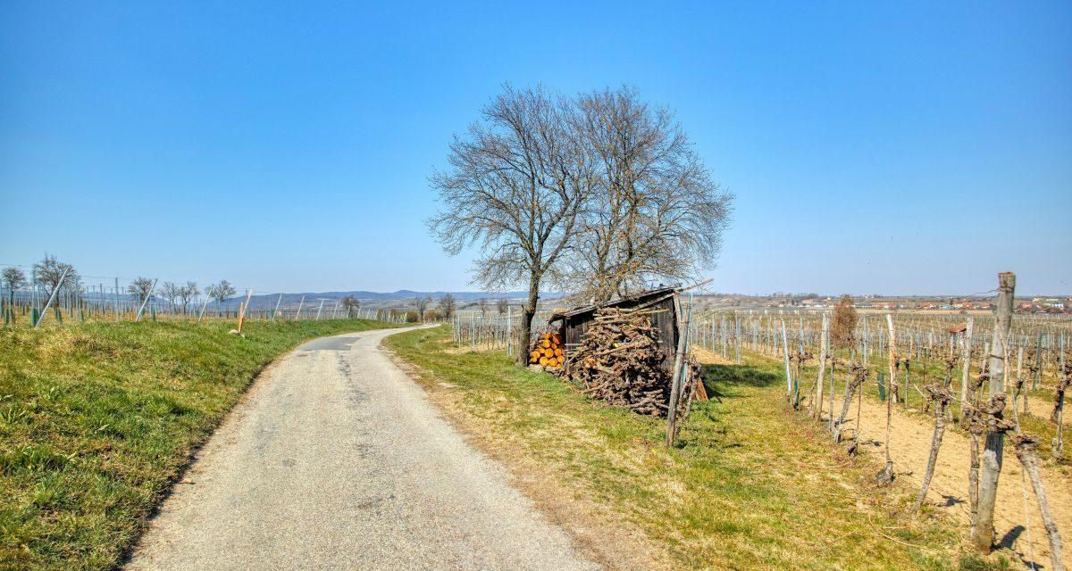 Kremser Rieden- und Wanderkarte – Wanderung 16: Holzgassenweg