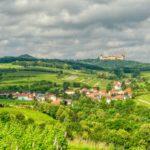 Krustettner Weinrieden Wanderwege: Eichbühel