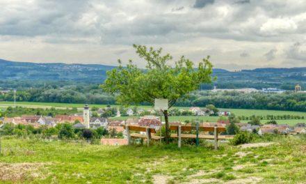 Die Gebling-Runde in Rohrendorf