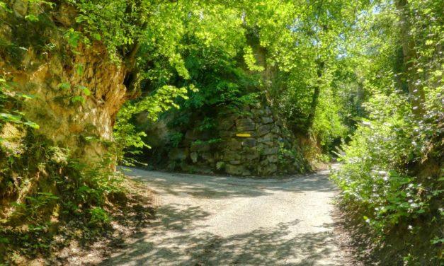 Der Hohlweg-Wanderweg in Traismauer