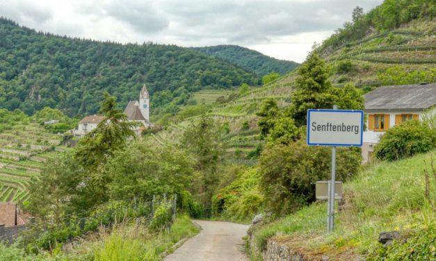 Rundwanderung vom Friedhof Senftenberg über Kirche, Ruine, Aussichtsturm und Motocross-Strecke