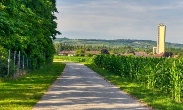 Grafenwörth bewegt – Route 1 (Wagram)
