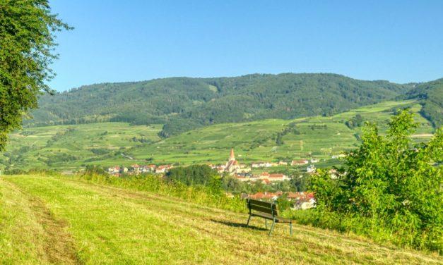 Marillenmeile Ost – Route 2 (grün)