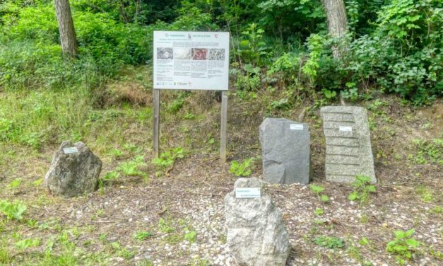"""Der Themenweg """"Natur und Stein"""" (Geologischer Lehrpfad) in Mautern – kurze Variante"""
