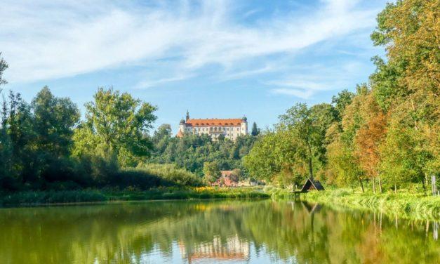 Der Karpfenlehrpfad rund um den Sitzenberger Schlossteich