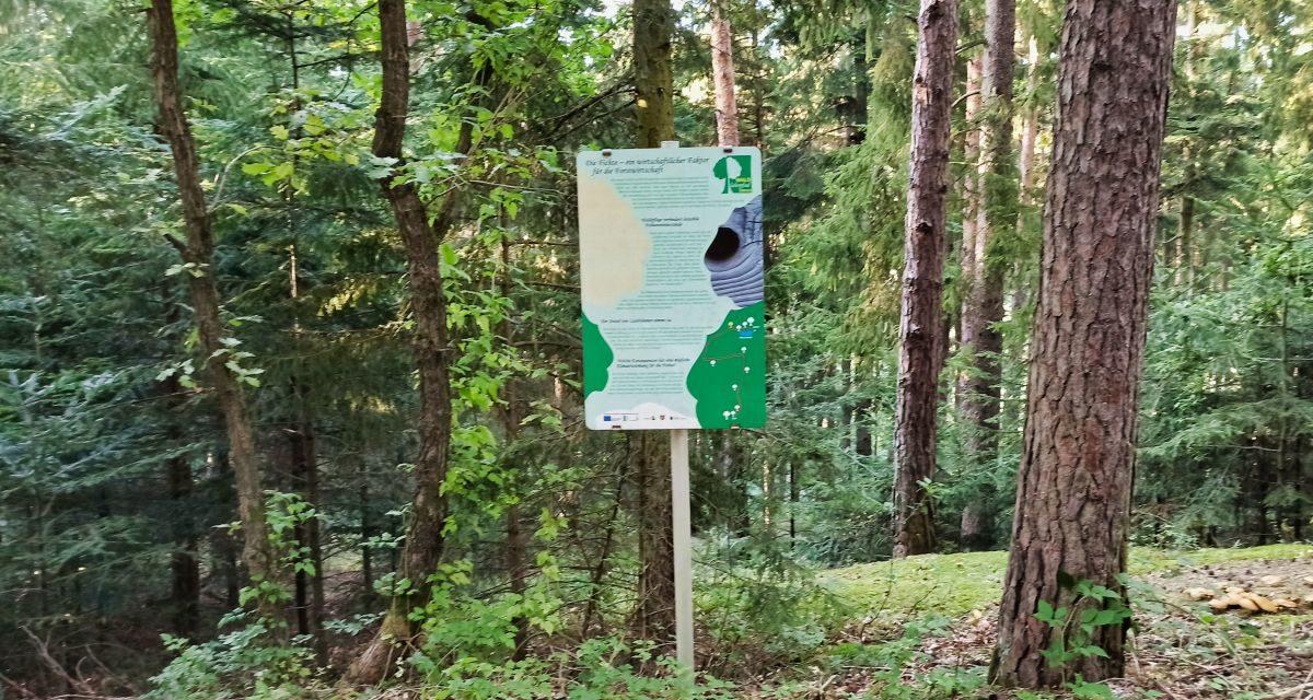 Der Waldlehrpfad der Gemeinde Droß