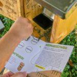 Der Weingeistweg – ein Kinderwanderweg in Spitz
