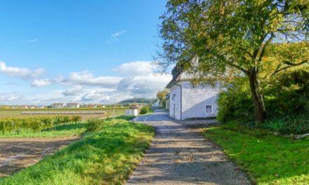 Lauf- und Nordic-Walking-Zentrum Wachau – Strecke 3: Kellergasse