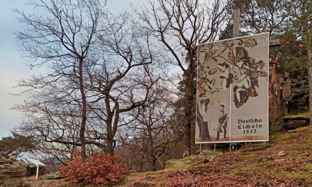 """Von der """"Wachauer Nase"""" zum Friedenskreuz"""