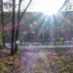 Von Schiltern über den Lachberg nach Kronsegg