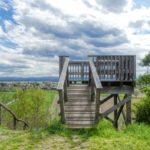 Von der Absberger Kellergasse zur Absdorfer Aussichtsplattform