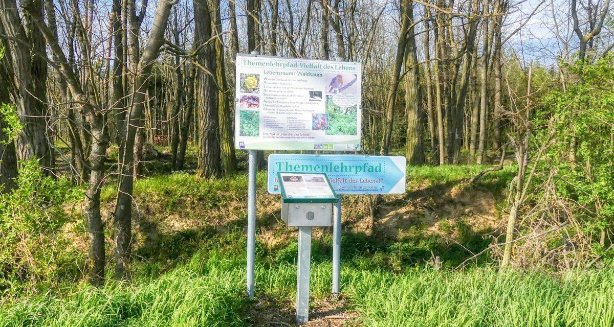 """Der Themenlehrpfad Biodiversität – """"Die Vielfalt des Lebens"""" in Sitzenberg"""