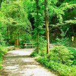 Der Wassergeistweg – ein Kinderwanderweg in Spitz