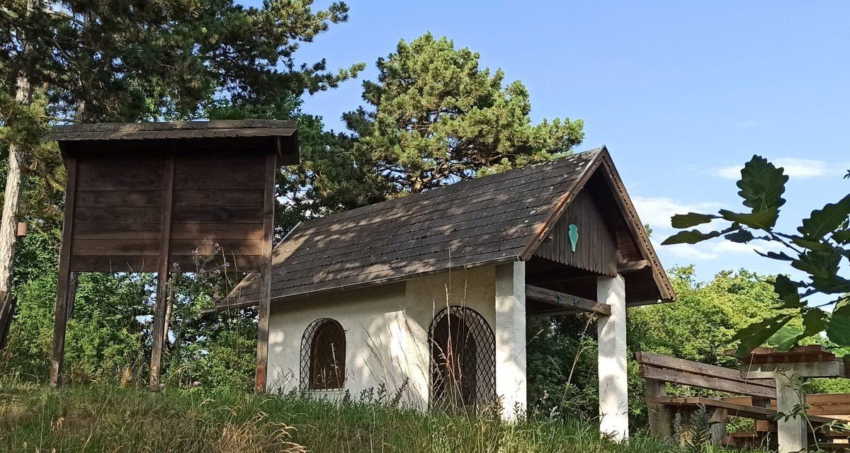 Der Waldlehrpfad in Schönberg am Kamp