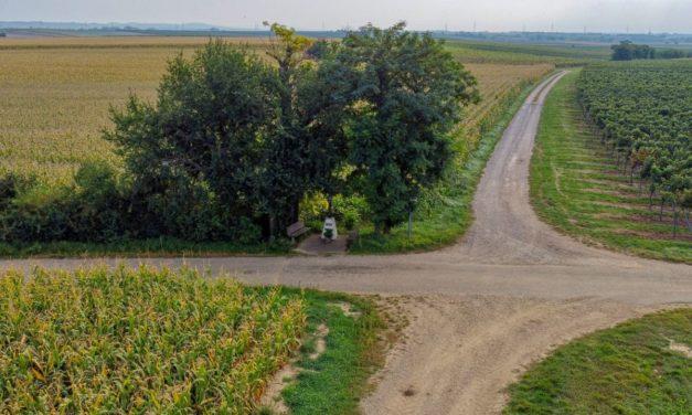 Zum Weinbergkreuz bei Engelmannsbrunn (ehem. Gartenschauweg 4A)